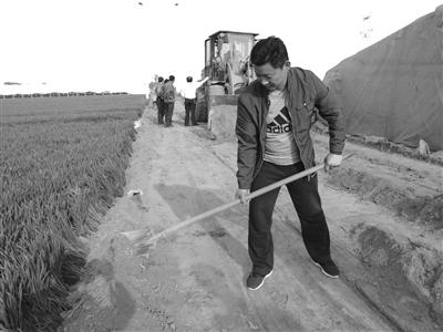 """李双阵村""""第一书记""""孙钦才带领群众修建生产路"""