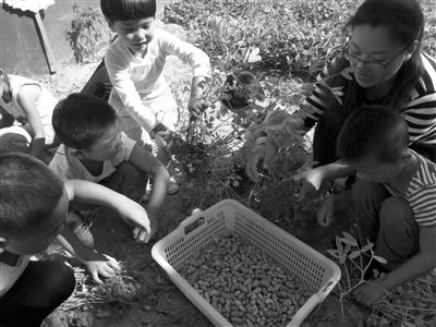 第二实验小学幼儿园的孩子享受丰收的快乐