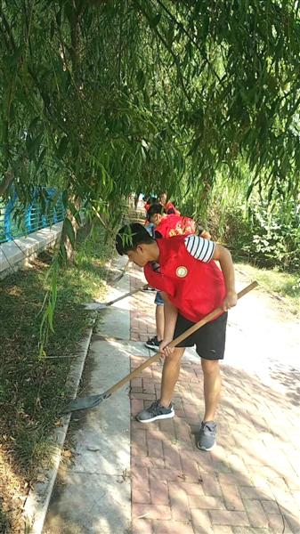 大学生志愿者助力清河行动