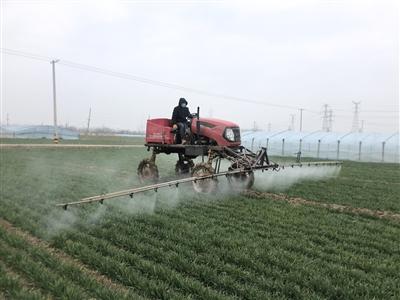 进行农药除草剂集中喷洒